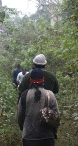 Picture of our companions tip-toeing through the jungle - notice the handbag over right shoulder!