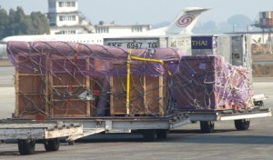 Picture of Bertha - with the yellow strap - about to board the flight to Bangkok.