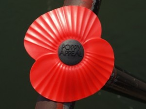 Picture of a Red Poppy which was fastened to the bridge by an unknown visitor.