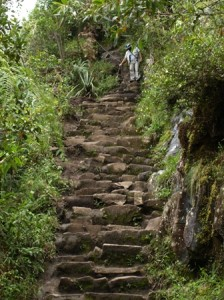 Picture of some of the steep steps on the way down the mountain.